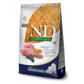 N&D Ancestral Grain Kuzu & Yaban Mersini Puppy Medium & Maxi 12 KG