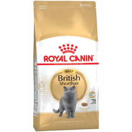 Royal Canin British Shorthair Adult Kedi Maması-10 KG