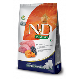 N&D Tahılsız Pumpkin Kuzu & Yaban Mersini Medium & Maxi Adult Köpek Maması 12KG